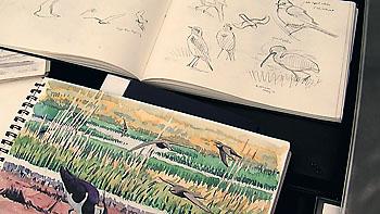 bird sketchbook richard allen
