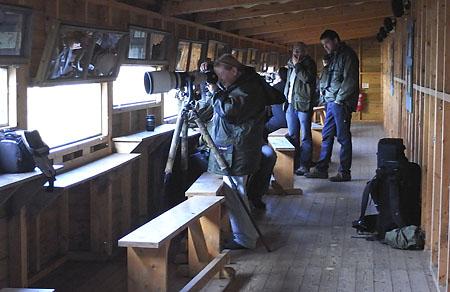 photographers at Welney