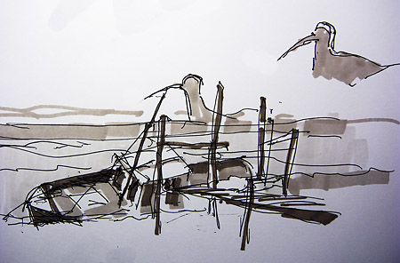 curlew and sunken boat
