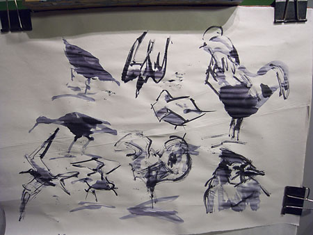more pen sketches of birds