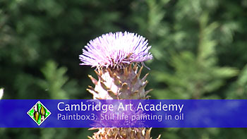 cardoons painting oils video
